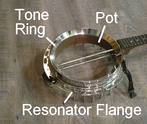 What is a Bluegrass Banjo?