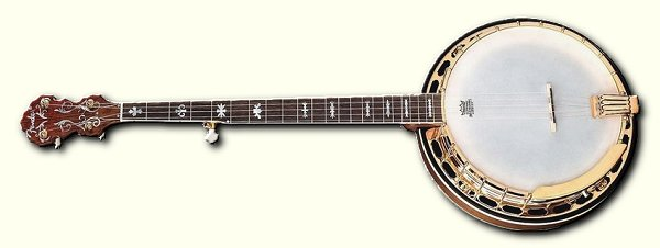 What Kind of Banjo Do I Want?