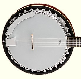 This Dean 'Backwoods Two' banjo substitutes one big piece of metal for the pot and resonator flange.  Some manufacturers call this the 'tone ring.'  Click for a bigger photo.