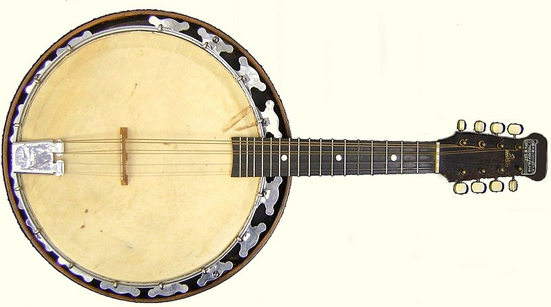 The Evolution of the Banjo