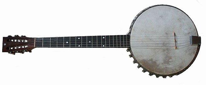 The Evolution of the Banjo